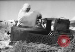 Image of Russian troops Europe, 1943, second 25 stock footage video 65675072037