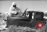 Image of Russian troops Europe, 1943, second 26 stock footage video 65675072037