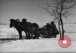 Image of Russian troops Europe, 1943, second 44 stock footage video 65675072037