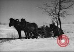 Image of Russian troops Europe, 1943, second 47 stock footage video 65675072037