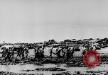 Image of United States Navy Task Force 58 in World War 2 Okinawa Ryukyu Islands, 1945, second 37 stock footage video 65675072095