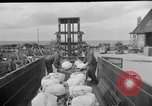 Image of combat cargo Japan, 1951, second 4 stock footage video 65675072151