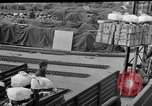 Image of combat cargo Japan, 1951, second 29 stock footage video 65675072151
