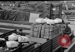 Image of combat cargo Japan, 1951, second 31 stock footage video 65675072151