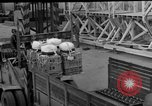 Image of combat cargo Japan, 1951, second 44 stock footage video 65675072151