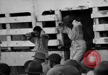 Image of Japanese mercy ship South Pacific Ocean, 1945, second 44 stock footage video 65675072160