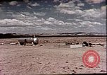 Image of Evaluation of Operation Cue nuclear blast effects Nevada United States USA, 1955, second 27 stock footage video 65675072224