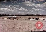 Image of Evaluation of Operation Cue nuclear blast effects Nevada United States USA, 1955, second 36 stock footage video 65675072224