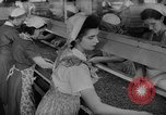 Image of pea crop New Jersey United States USA, 1946, second 25 stock footage video 65675072231