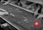 Image of pea crop New Jersey United States USA, 1946, second 28 stock footage video 65675072231