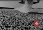 Image of pea crop New Jersey United States USA, 1946, second 42 stock footage video 65675072231