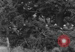 Image of Communist Chinese troops Kaesong Korea, 1951, second 41 stock footage video 65675072263