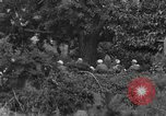 Image of Communist Chinese troops Kaesong Korea, 1951, second 42 stock footage video 65675072263