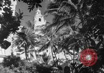 Image of US fighter aircraft Hawaii USA, 1942, second 30 stock footage video 65675072319