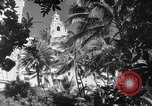 Image of US fighter aircraft Hawaii USA, 1942, second 32 stock footage video 65675072319