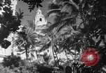 Image of US fighter aircraft Hawaii USA, 1942, second 34 stock footage video 65675072319