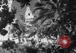 Image of US fighter aircraft Hawaii USA, 1942, second 35 stock footage video 65675072319