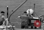Image of moored minesweeping United States USA, 1958, second 45 stock footage video 65675072324
