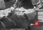 Image of Chinese refugees China, 1949, second 26 stock footage video 65675072371