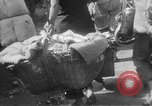 Image of Chinese refugees China, 1949, second 27 stock footage video 65675072371