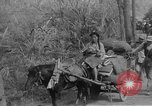 Image of Chinese refugees China, 1949, second 28 stock footage video 65675072371