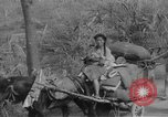 Image of Chinese refugees China, 1949, second 29 stock footage video 65675072371