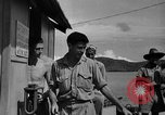 Image of 5th Air Force Port Moresby Papua New Guinea, 1942, second 39 stock footage video 65675072396