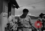 Image of 5th Air Force Port Moresby Papua New Guinea, 1942, second 40 stock footage video 65675072396