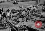 Image of 5th Air Force Port Moresby Papua New Guinea, 1942, second 60 stock footage video 65675072396