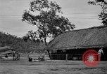Image of 5th Air Force Pacific Theater, 1942, second 14 stock footage video 65675072397