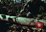 Image of survival techniques Philippines, 1968, second 9 stock footage video 65675072401