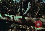 Image of survival techniques Philippines, 1968, second 14 stock footage video 65675072401