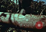 Image of survival techniques Philippines, 1968, second 21 stock footage video 65675072401