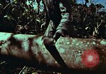 Image of survival techniques Philippines, 1968, second 23 stock footage video 65675072401