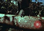 Image of survival techniques Philippines, 1968, second 25 stock footage video 65675072401