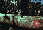 Image of survival techniques Philippines, 1968, second 26 stock footage video 65675072401