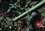 Image of survival techniques Philippines, 1968, second 34 stock footage video 65675072401