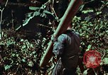 Image of survival techniques Philippines, 1968, second 35 stock footage video 65675072401