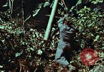Image of survival techniques Philippines, 1968, second 38 stock footage video 65675072401