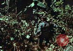 Image of survival techniques Philippines, 1968, second 39 stock footage video 65675072401