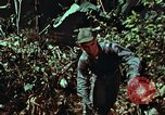Image of survival techniques Philippines, 1968, second 42 stock footage video 65675072401