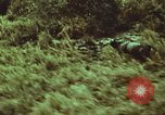 Image of jungle animals and fish Philippines, 1968, second 56 stock footage video 65675072410