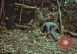 Image of survival techniques Philippines, 1968, second 17 stock footage video 65675072412