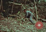 Image of survival techniques Philippines, 1968, second 18 stock footage video 65675072412