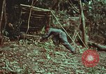 Image of survival techniques Philippines, 1968, second 19 stock footage video 65675072412