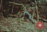 Image of survival techniques Philippines, 1968, second 20 stock footage video 65675072412