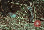 Image of survival techniques Philippines, 1968, second 24 stock footage video 65675072412