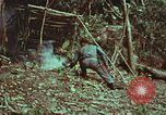 Image of survival techniques Philippines, 1968, second 28 stock footage video 65675072412