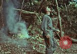 Image of survival techniques Philippines, 1968, second 33 stock footage video 65675072412