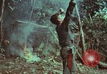 Image of survival techniques Philippines, 1968, second 35 stock footage video 65675072412